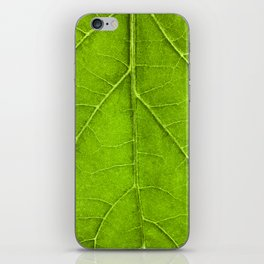 Leaf Veins iPhone Skin