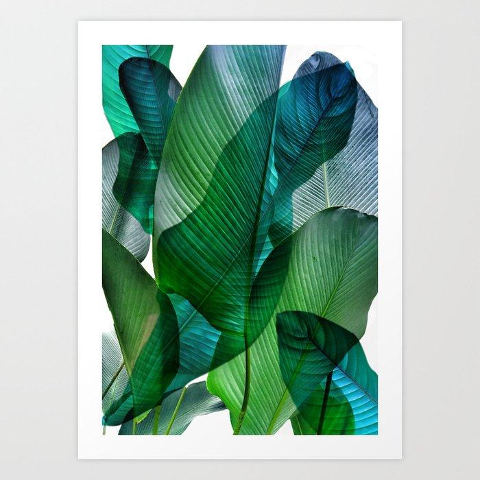 Palm leaf jungle Bali banana palm frond greens Kunstdrucke