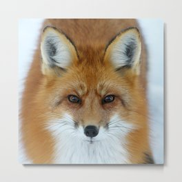 I can see into your soul Metal Print