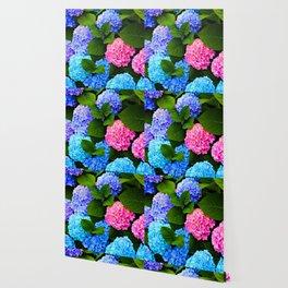 Wonderland is Calling Wallpaper