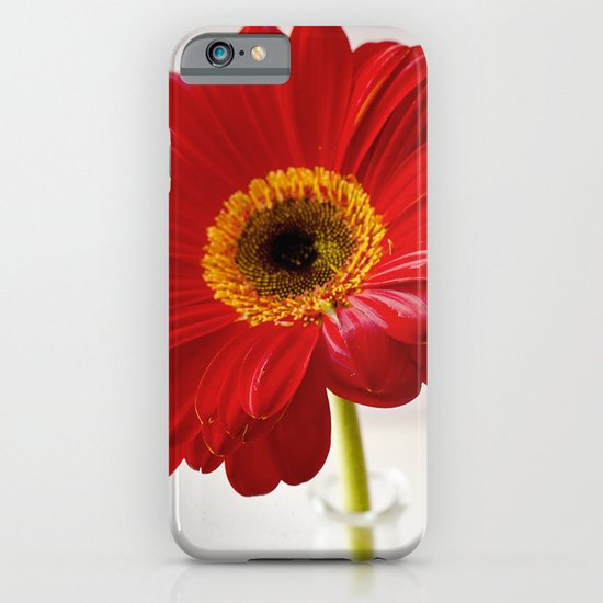 red gerbera iPhone & iPod Case