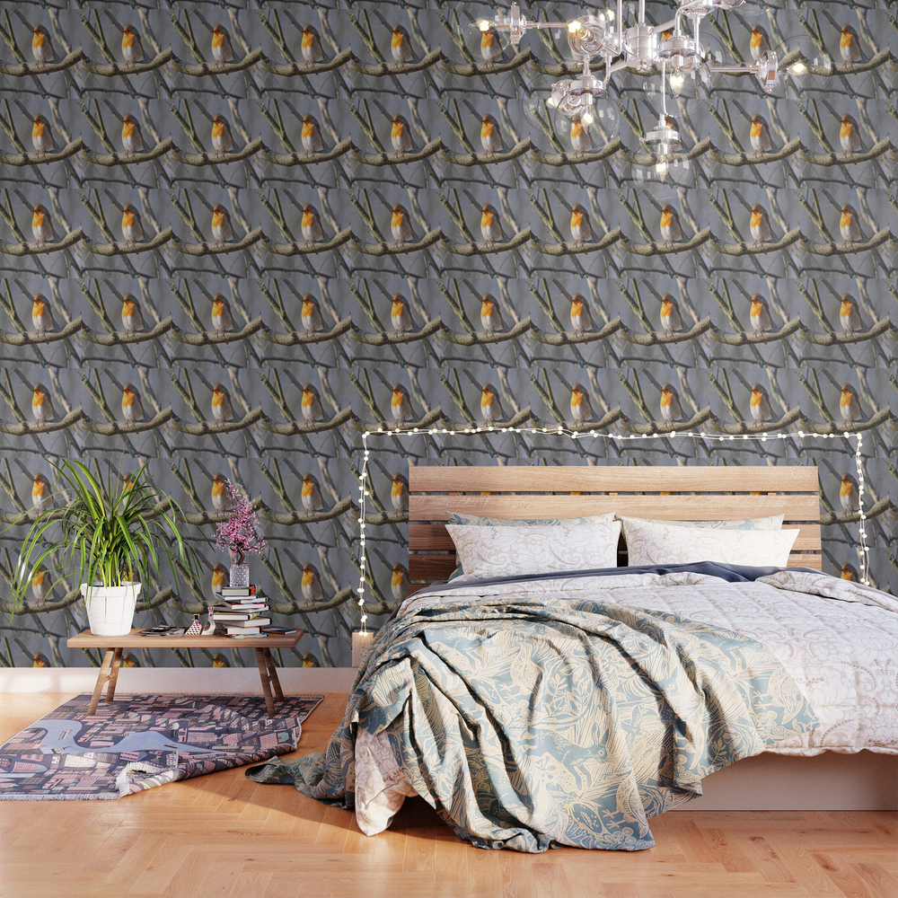 Fluffy Robin Redbreast Wallpaper by Pirminnohr (WPP915575) photo