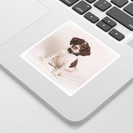 Brittany Puppy Sitting Sticker