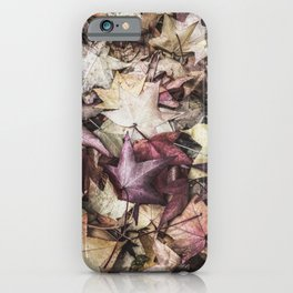 Bed of Autumn Leaves (Neutral Tones and Detail) iPhone Case