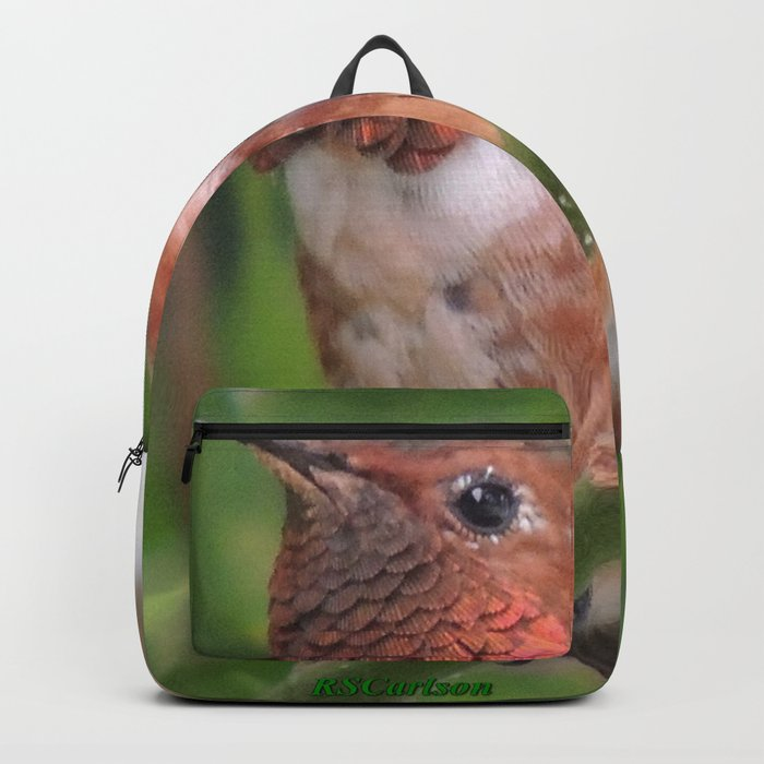 Hummingbird in the Japanese Maple Backpack