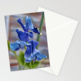 Sweet Pea Flower Stationery Cards