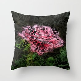 Pink Roses in Anzures 3 Letters 2 Throw Pillow