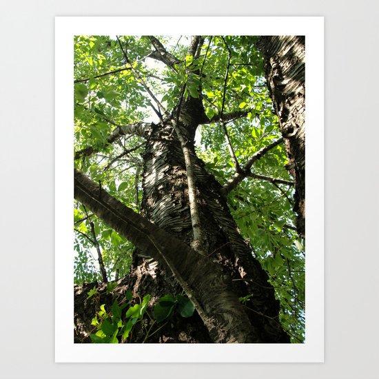 My Tree Art Print