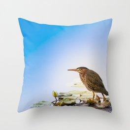 Crowned Night-Heron- Hammond pond Throw Pillow