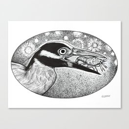 Yellow Crowned Night Heron Canvas Print
