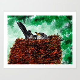 Robin in a nest Art Print