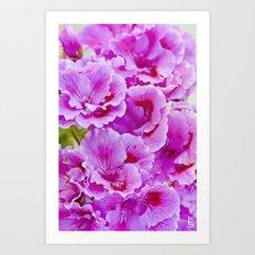 Pink Geranium I Art Print