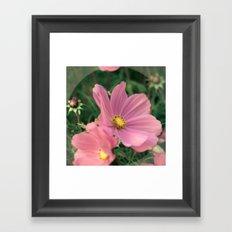 Wild flower in pink Framed Art Print
