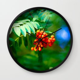 Red Ashberries Green Tree. Floral Beauty Of The Summer Season Wall Clock