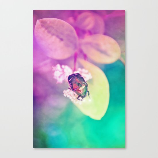 LOVEBUG Canvas Print
