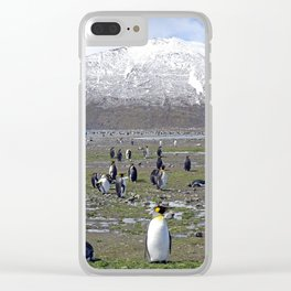 King Penguin Colony Clear iPhone Case