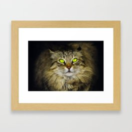 Cat with Green Eyes Framed Art Print