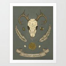 Natural Symmetry Art Print