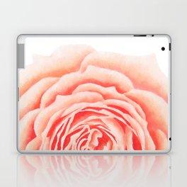 Flower, Big Rose Laptop & iPad Skin