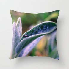 fly on Stachys leaf Photography - Nature - Garden - Plant  Throw Pillow