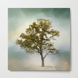 Bleached Sage Green Cotton Field Tree - Landscape  Metal Print
