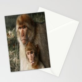 Cheeky Monkey Stationery Cards