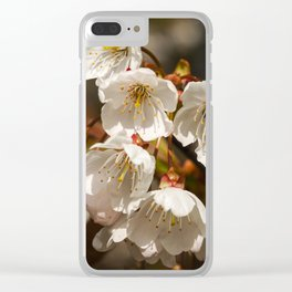 White Cherry Blossom Clear iPhone Case
