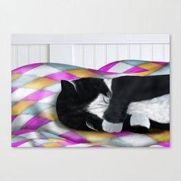 Tuxedo Cat Napping Canvas Print
