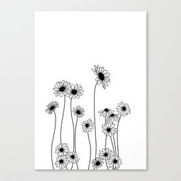 Minimal line drawing of daisy flowers Canvas Print