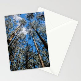 Tall Timber Stationery Cards