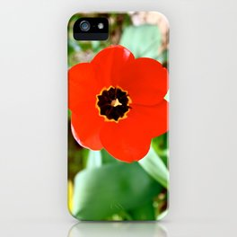 Red Portal iPhone Case