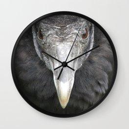 American black vulture Wall Clock