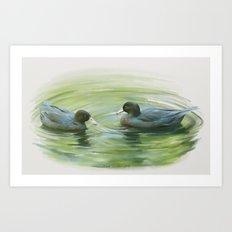 Blue Ducks in pond Art Print