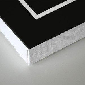 Outside the Box (On Black) Canvas Print