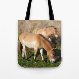 Przewalski horses Tote Bag