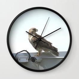 Security camera hawk 8 Wall Clock