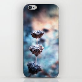 Stages of Beauty iPhone Skin