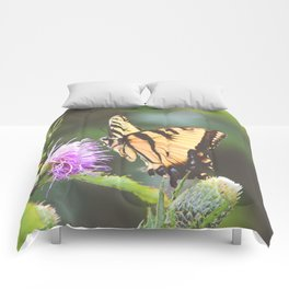 Eastern Tiger Swallowtail Butterfly on Thistle Photography Comforters