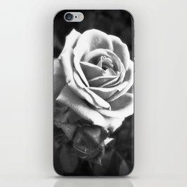 Pink Roses in Anzures 2 B&W iPhone Skin
