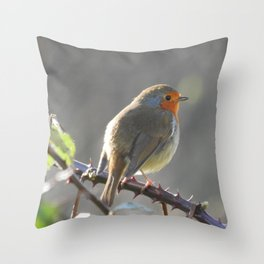Soft Feathers, Sharp Thorns Throw Pillow