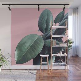 Ficus Elastica #14 #CoralBlush #decor #art #society6 Wall Mural