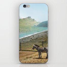 Seabras iPhone Skin