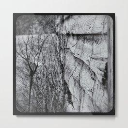 Winter Lasts Too Long Metal Print
