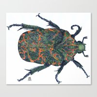 beetle Canvas Prints featuring Beetle by MSRomeiro