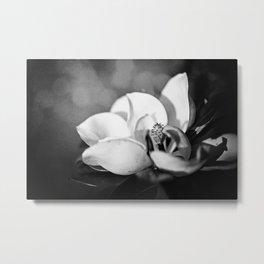 Magnolia II Metal Print