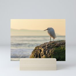 Young Egret Mini Art Print