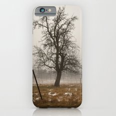 Tree Stands Tall Slim Case iPhone 6s