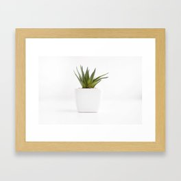Succulent for minimalists Framed Art Print