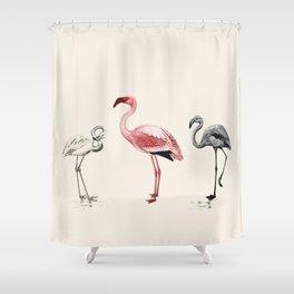 The Tres Flam-igos Shower Curtain