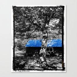 Shambhala Shed 4a - Perl Canvas Print